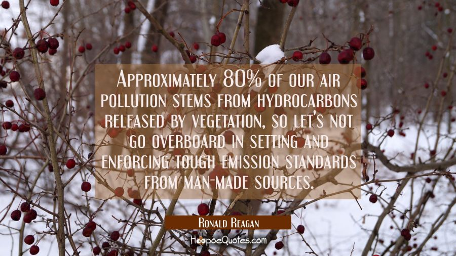 Approximately 80% of our air pollution stems from hydrocarbons released by vegetation so let's not Ronald Reagan Quotes