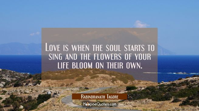 Love is when the soul starts to sing and the flowers of your life bloom on their own.