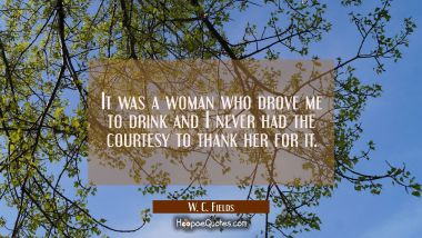 It was a woman who drove me to drink and I never had the courtesy to thank her for it.
