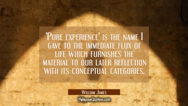 'Pure experience' is the name I gave to the immediate flux of life which furnishes the material to