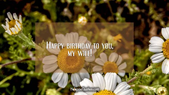 Happy birthday to you, my wife!