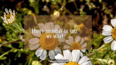 Happy birthday to you, my wife! Birthday Quotes