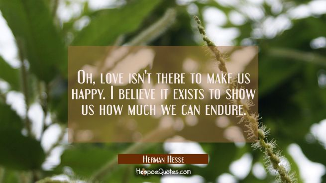Oh, love isn't there to make us happy. I believe it exists to show us how much we can endure.