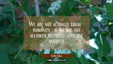 We are not actually equal - humanity - if we are not allowed to freely love one another. Lady Gaga Quotes