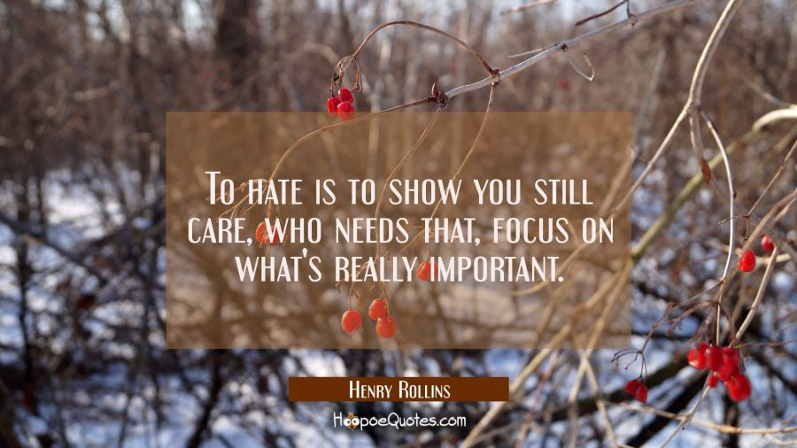 To hate is to show you still care who needs that focus on what's really important. Henry Rollins Quotes