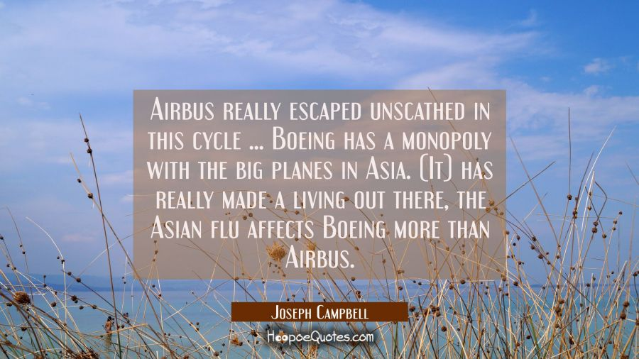 Airbus really escaped unscathed in this cycle ... Boeing has a monopoly with the big planes in Asia Joseph Campbell Quotes