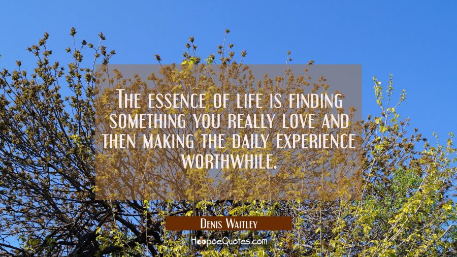 The essence of life is finding something you really love and then making the daily experience worth Denis Waitley Quotes