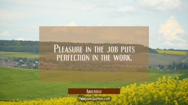 Pleasure in the job puts perfection in the work. Aristotle Quotes