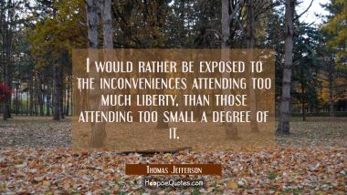 I would rather be exposed to the inconveniences attending too much liberty than those attending too