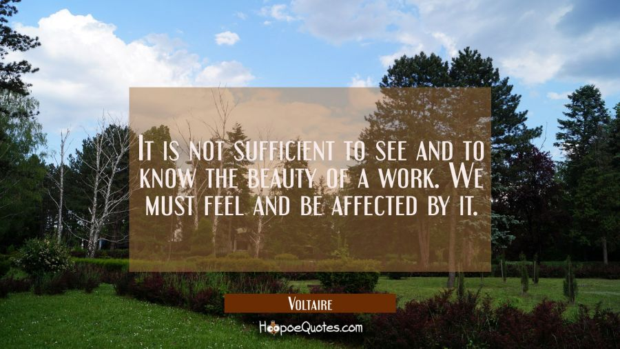It is not sufficient to see and to know the beauty of a work. We must feel and be affected by it. Voltaire Quotes