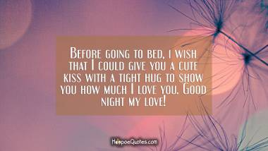 Before going to bed, i wish that I could give you a cute kiss with a tight hug to show you how much I love you. Good night my love! Good Night Quotes