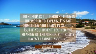 Friendship is the hardest thing in the world to explain. It's not something you learn in school. But if you haven't learned the meaning of friendship, you really haven't learned anything. Muhammad Ali Quotes