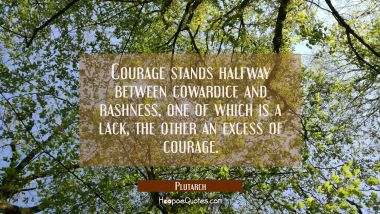 Courage stands halfway between cowardice and rashness one of which is a lack the other an excess of Plutarch Quotes
