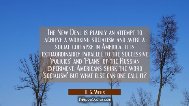 The New Deal is plainly an attempt to achieve a working socialism and avert a social collapse in Am