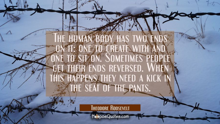 The human body has two ends on it: one to create with and one to sit on. Sometimes people get their Theodore Roosevelt Quotes