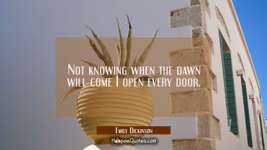 Not knowing when the dawn will come I open every door.