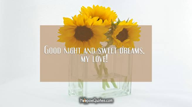 Good night and sweet dreams, my love!