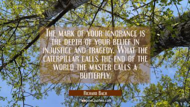 The mark of your ignorance is the depth of your belief in injustice and tragedy. What the caterpill Richard Bach Quotes