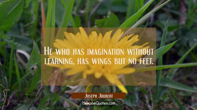 He who has imagination without learning has wings but no feet.
