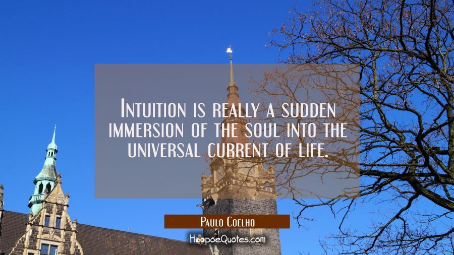 Intuition is really a sudden immersion of the soul into the universal current of life. Paulo Coelho Quotes