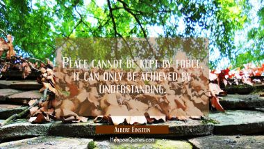 Peace cannot be kept by force, it can only be achieved by understanding. Albert Einstein Quotes