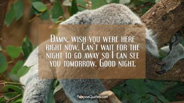 Damn, wish you were here right now. Can't wait for the night to go away so I can see you tomorrow. Good night. Good Night Quotes