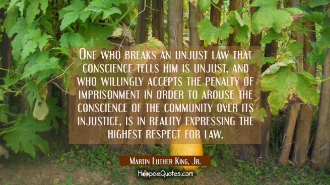 One who breaks an unjust law that conscience tells him is unjust and who willingly accepts the pena