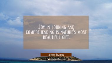 Joy in looking and comprehending is nature's most beautiful gift. Albert Einstein Quotes