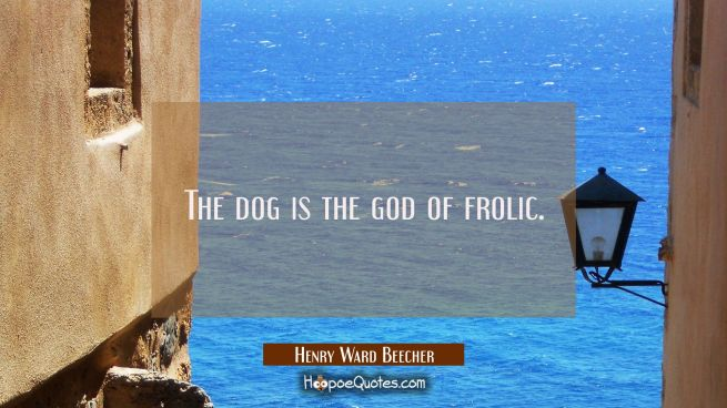 The dog is the god of frolic.