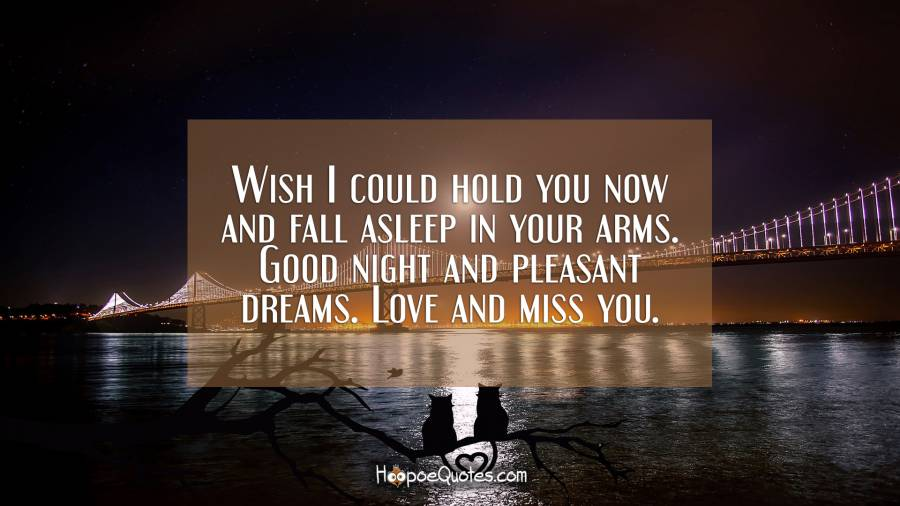 Wish I Could Hold You Now And Fall Asleep In Your Arms Good Night