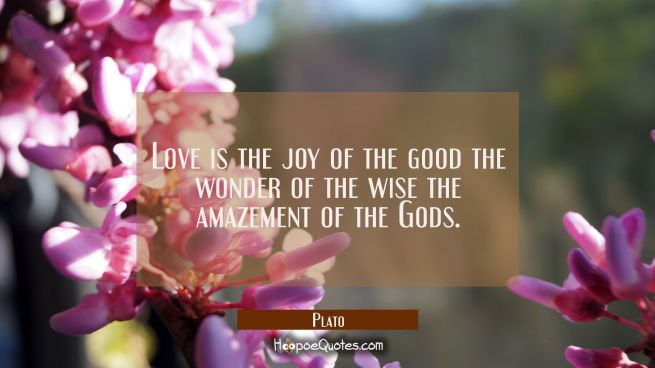 Love is the joy of the good the wonder of the wise the amazement of the Gods.