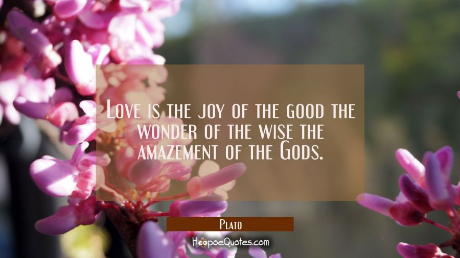 Love is the joy of the good the wonder of the wise the amazement of the Gods. Plato Quotes