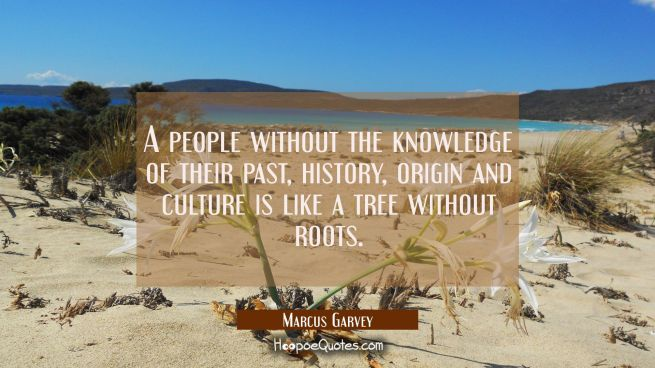 A people without the knowledge of their past history origin and culture is like a tree without root