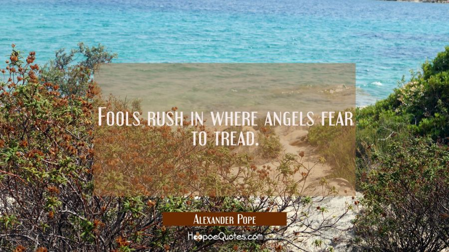 Fools Rush In Where Angels Fear To Tread Hoopoequotes