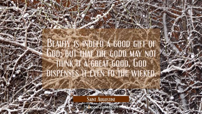 Beauty is indeed a good gift of God, but that the good may not think it a great good God dispenses