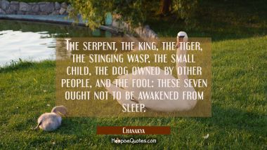 The serpent the king the tiger the stinging wasp the small child the dog owned by other people and Chanakya Quotes