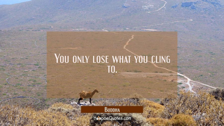 Quote of the Day - You only lose what you cling to. - Buddha