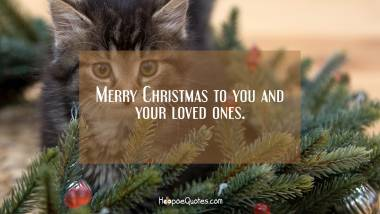 Merry Christmas to you and your loved ones Christmas Quotes