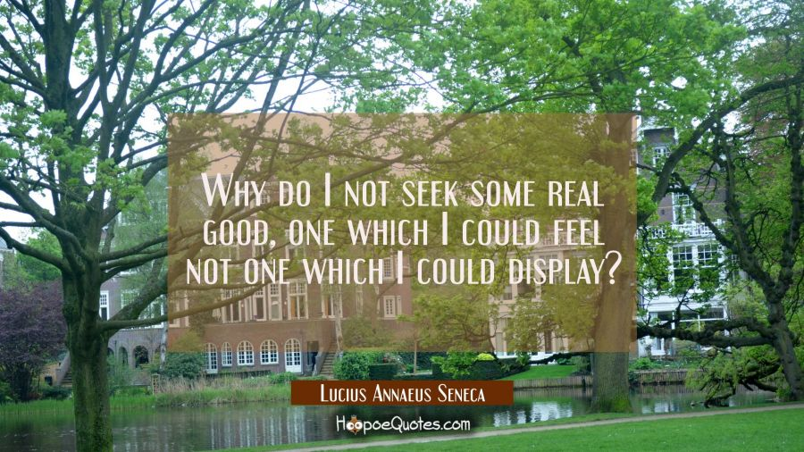Why do I not seek some real good, one which I could feel not one which I could display? Lucius Annaeus Seneca Quotes