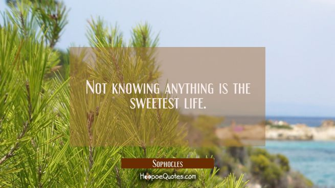 Not knowing anything is the sweetest life.