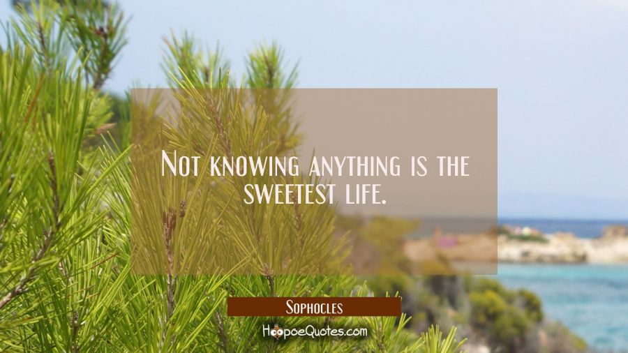 Not knowing anything is the sweetest life. Sophocles Quotes