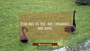 Fear has its use but cowardice has none.