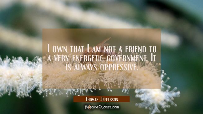 I own that I am not a friend to a very energetic government. It is always oppressive.
