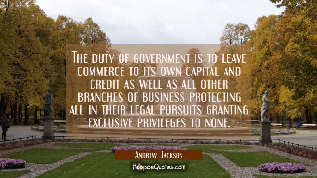 The duty of government is to leave commerce to its own capital and credit as well as all other bran