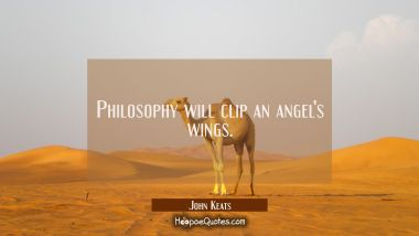 Philosophy will clip an angel's wings. John Keats Quotes