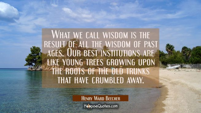What we call wisdom is the result of all the wisdom of past ages. Our best institutions are like yo