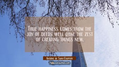 True happiness comes from the joy of deeds well done the zest of creating things new.