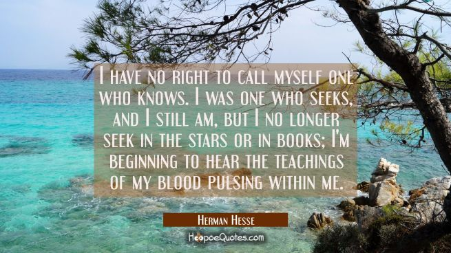 I have no right to call myself one who knows. I was one who seeks, and I still am, but I no longer seek in the stars or in books; I'm beginning to hear the teachings of my blood pulsing within me.