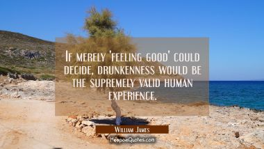 If merely 'feeling good' could decide drunkenness would be the supremely valid human experience. William James Quotes