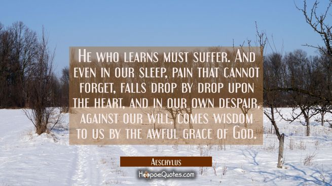 He who learns must suffer. And even in our sleep pain that cannot forget falls drop by drop upon th